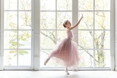 Free Young Ballet Dancer In Dance Class Stock Photo - 103266490