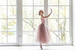 Free Young Ballet Dancer In Dance Class Stock Images - 103363034