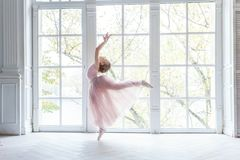 Free Young Ballet Dancer In Dance Class Royalty Free Stock Photography - 103363077