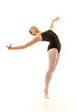 Young ballet dancer posing Royalty Free Stock Image