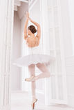 Young ballet dancer standing on tiptoes Stock Images