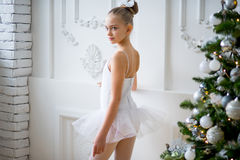 Young ballet dancers learning the lesson near Christm. As tree. Try some new pose Stock Images