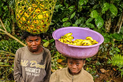 Young banana sellers Stock Photography