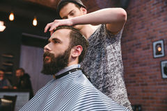 Young barber cutting hair of  bearded hipster in barbershop Stock Images
