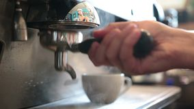 Young barista preparing coffee in a cafe Royalty Free Stock Image