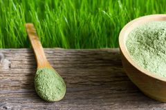 Young barley and chlorella spirulina on wooden board and green grass royalty free stock images