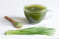 Young barley with fresh grass detox diet concept Stock Images