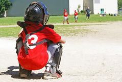 Young Baseball Catcher Stock Photos