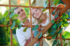 Young bautiful couple at the wooden lattice Royalty Free Stock Photography