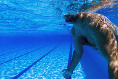 Young beard man alone in swimming pool Underwater Man with Beard Underwater swimming pool Stock Photos