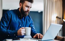 Young bearded businessman working on computer at table, drinking coffee.Man analyzes information, develops business plan. Young serious bearded businessman Royalty Free Stock Images