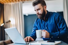 Young bearded businessman working on computer at table, drinking coffee.Man analyzes information, develops business plan. Young serious bearded businessman Stock Images