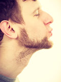 Young bearded man blowing kiss Royalty Free Stock Images
