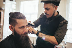 Young bearded man getting haircut in salon royalty free stock photos