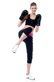 Young beautiful active female boxer Royalty Free Stock Images