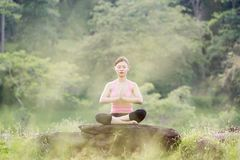 Young beautiful asian woman practicing yoga Royalty Free Stock Image