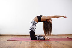 Young beautiful athletic girl practicing indoor yoga asanas. Ustrasana. Camel Posture Stock Images