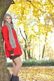 Young beautiful autumn girl royalty free stock image