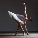 Young beautiful ballerina posing in studio. Young beautiful dancer is posing in studio Stock Photography