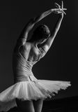 Young beautiful ballerina posing in studio Royalty Free Stock Image