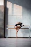 Young beautiful ballerina posing in studio Royalty Free Stock Images