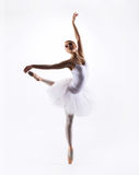 Young beautiful ballet dancer on a white background Stock Image