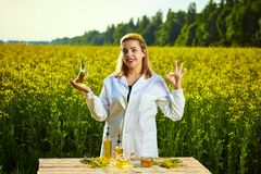 A young beautiful biologist or agronomist examines the quality of rapeseed oil on a rape field. Agribusiness concept. A young beautiful biologist or agronomist royalty free stock photography