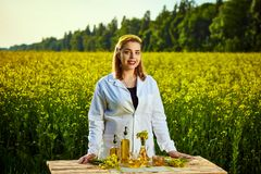 A young beautiful biologist or agronomist examines the quality of rapeseed oil on a rape field. Agribusiness concept. A young beautiful biologist or agronomist stock photography