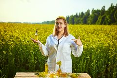 A young beautiful biologist or agronomist examines the quality of rapeseed oil on a rape field. Agribusiness concept. A young beautiful biologist or agronomist stock photo