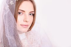 Young beautiful blond fiancee portrait with white veil/. Young beautiful blond fiancee portrait with white veil on light background looking at camera Stock Image