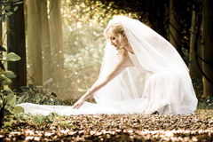 Young beautiful blonde bride adjusting her wedding dress Stock Photo