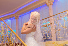 Young beautiful blonde bride intimate portrait with closed eyes wearing veil.  Stock Photos