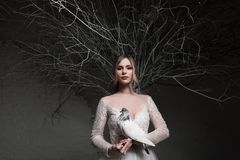 A young blonde bride in white wedding dress on a background of white walls and white tree in the background holds a stock images