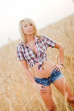 Young beautiful blonde in a field of grain Stock Photos