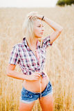 Young beautiful blonde in a field of grain Royalty Free Stock Photo
