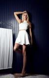 Young beautiful blonde girl posing Stock Photography