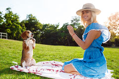 Young beautiful blonde girl walking, playing with beagle dog in park. Stock Photo