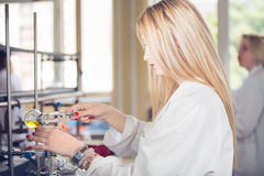 Young beautiful blonde woman researcher chemist preparing substances for chemical use with laboratory dishes.Pharmacist making ch Stock Photos