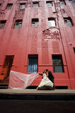 Young beautiful bridal couple leaning against red building. Kissing with veil Stock Photography