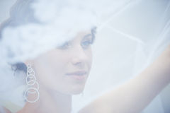 Young beautiful bride. Portrait of the young beautiful bride Royalty Free Stock Photo