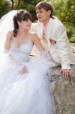Young and beautiful bride and groom Royalty Free Stock Photography