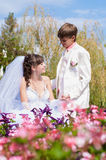 Young and beautiful bride and groom Royalty Free Stock Image