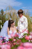 Young and beautiful bride and groom Stock Images