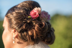 Young beautiful bride hair in nature Royalty Free Stock Photography