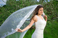 Young beautiful bride with long veil in blooming garden. Young beautiful bride with long veil in blooming summer garden Stock Image