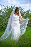 Young beautiful bride with long veil walking in blooming garden. Young beautiful bride with long veil walking in blooming summer garden Royalty Free Stock Images