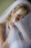 Young beautiful Bride looking though veil Stock Images