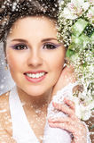 Young and beautiful bride on a snowy winter background Stock Image