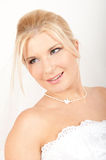 Young beautiful bride with veil Stock Images