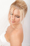 Young beautiful bride with veil on her wedding Stock Images